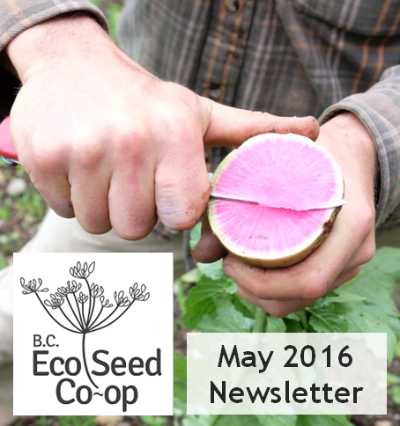 May Newsletter now in your inbox