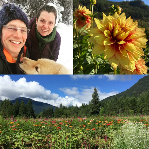 top right: lana and brad smiling, left: flower blooming, bottom: flower field on a clear day with mountains