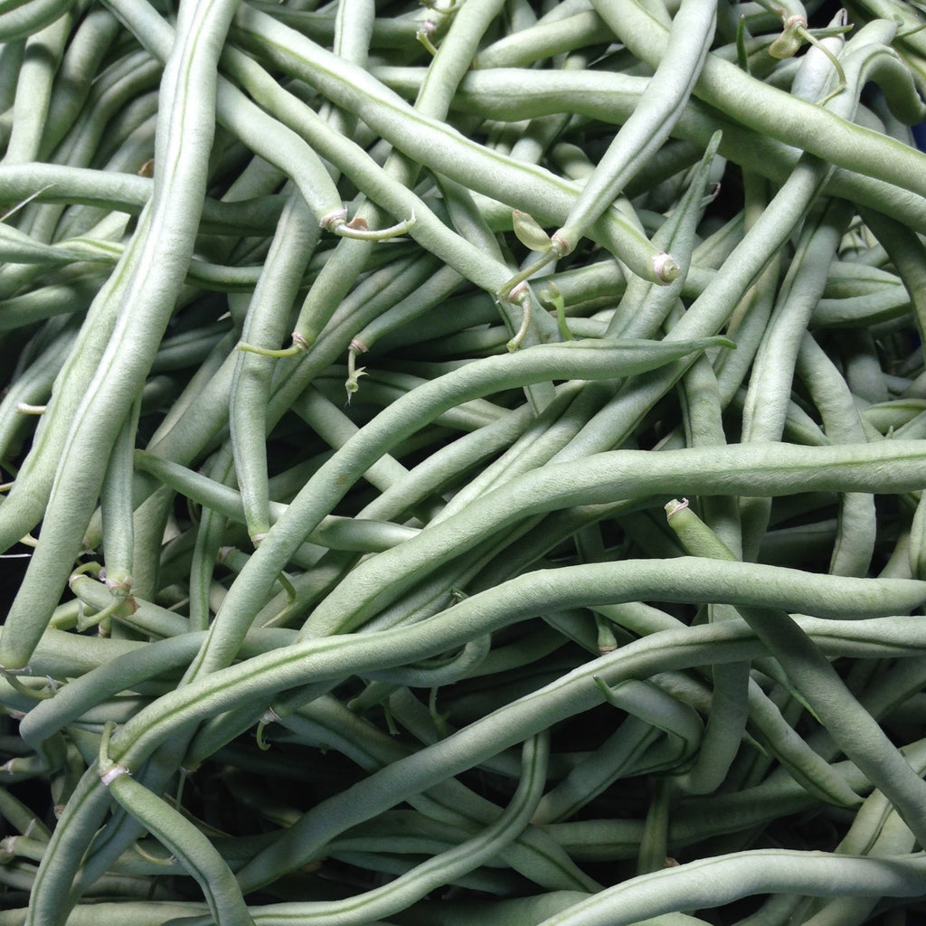 Emerite Pole Bean