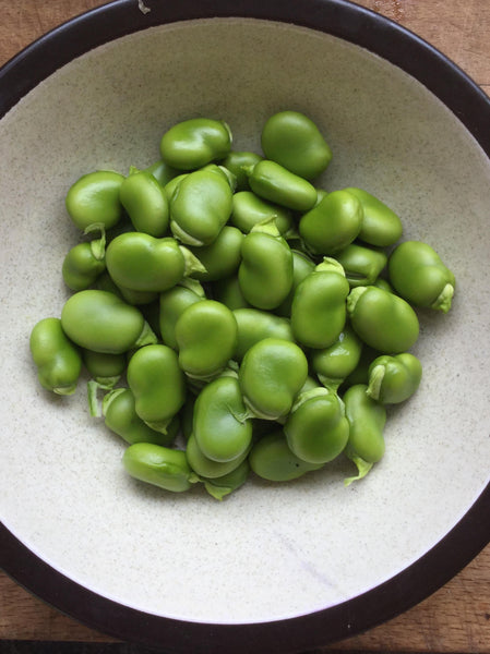 Val's Broad Bean