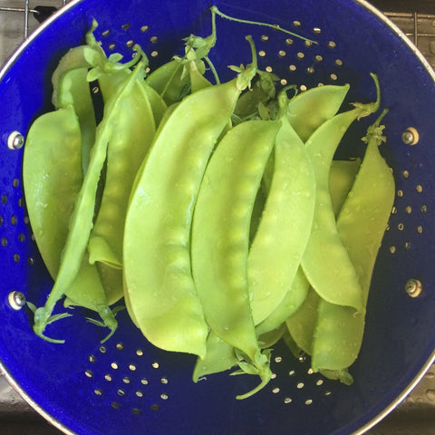 Banana Nano Snap Pea TO