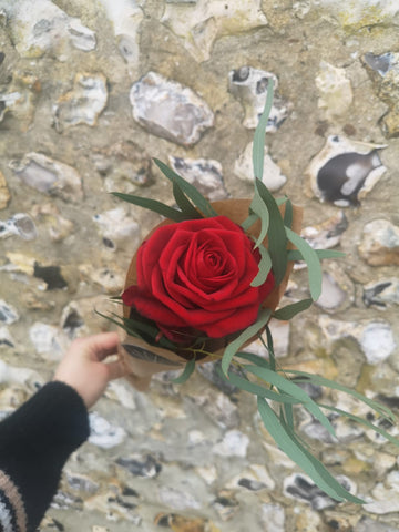 Valentine's Day Single Red Rose - Dorset Delivery Only