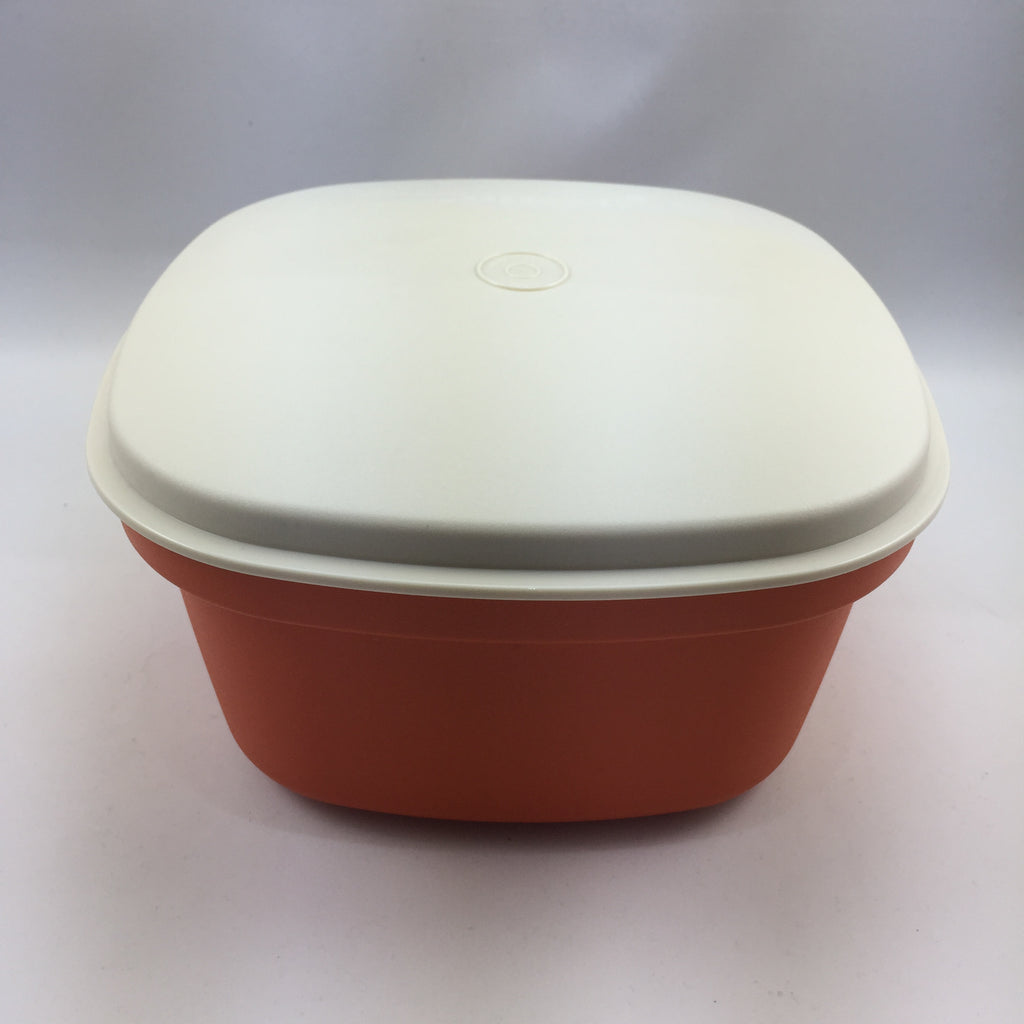 Tupperware Vintage Insulated MultiServer