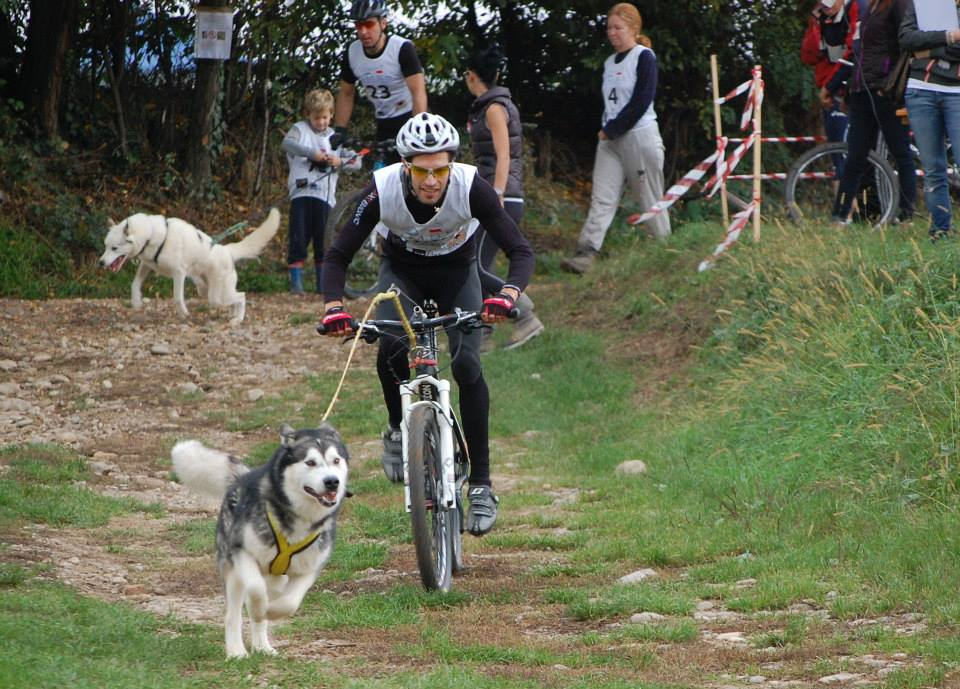 Bikejoring with dog (Neewa equipment)