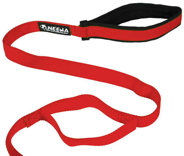 Leash with Handle
