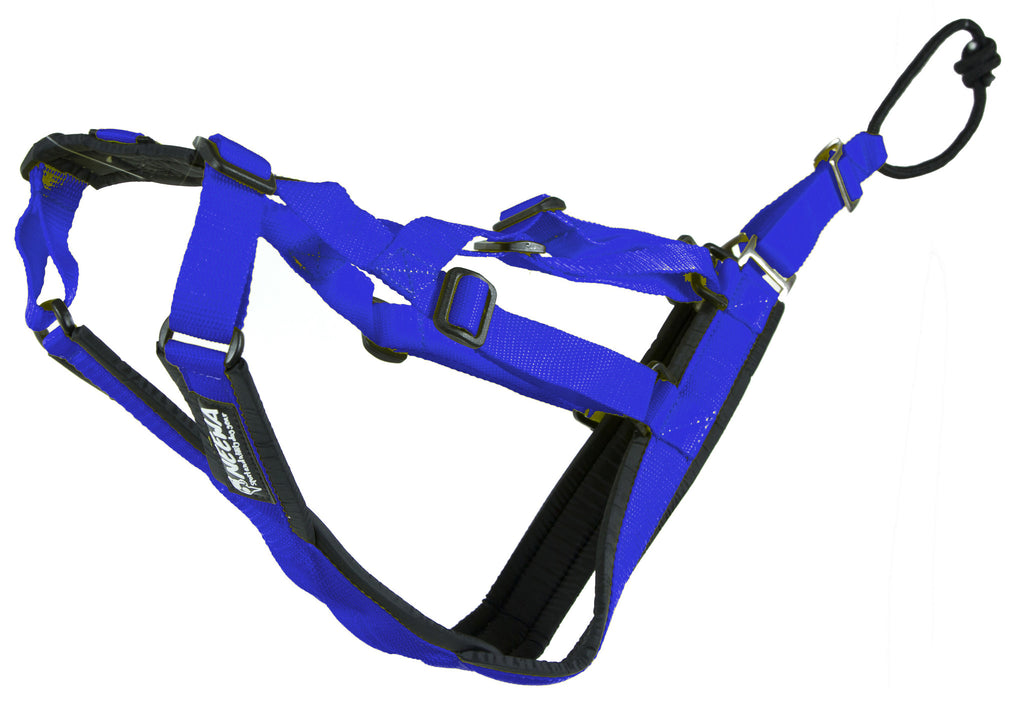 Perfect-Fit Harness