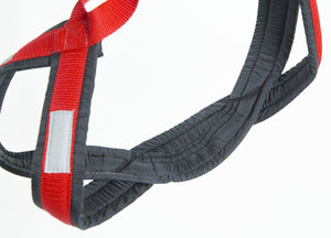 X-Back Racing Harness