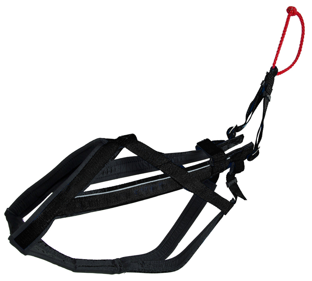 Adjustable Racing Harness