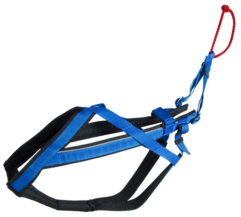blue Adjustable Racing Harness for dog sports activities