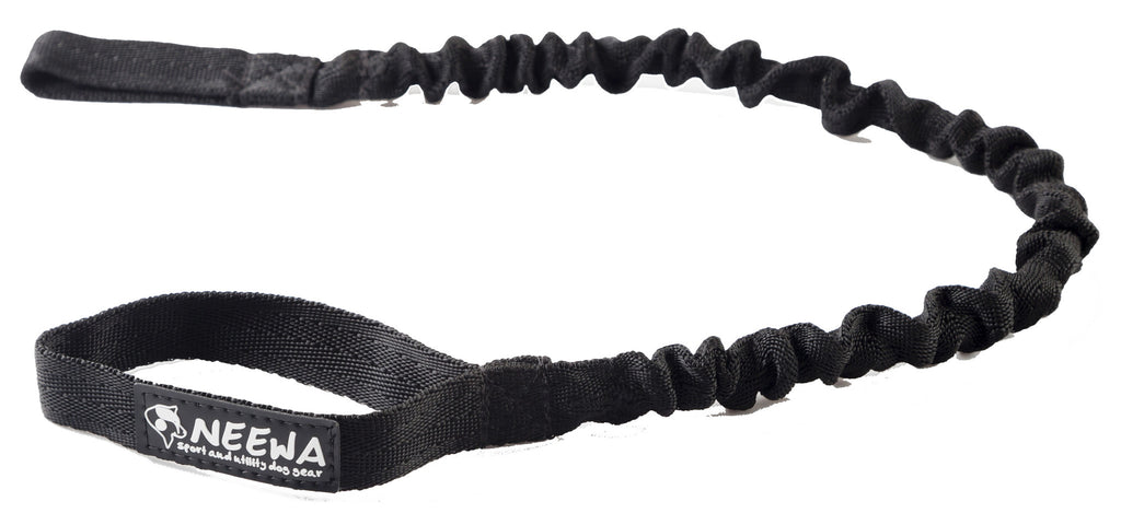 Shock Absorbing Dog Leash