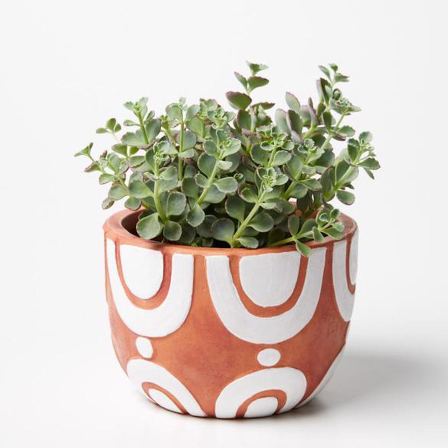 Radius Pot White Brown