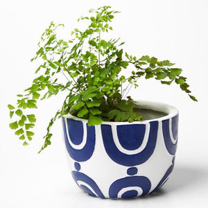 Radius Pot Blue White