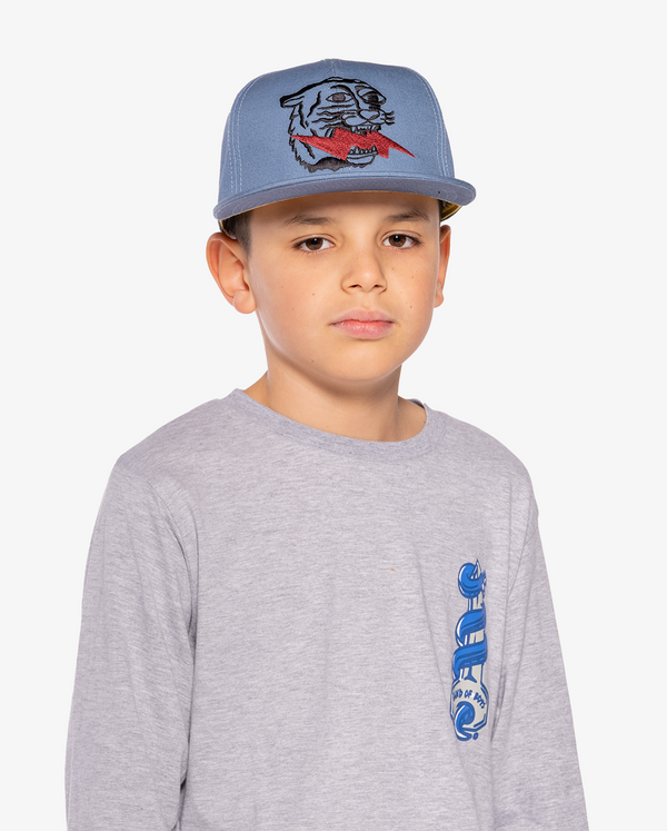 Blue Band of Boys Lightning Tiger Hip Hop Cap on model