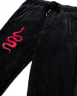 Bandits by Band of Boys Black Panel Trackies with Red Viper - Flat lay close up of snake