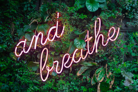 tropical green leaves with a pink neon sign saying and breathe
