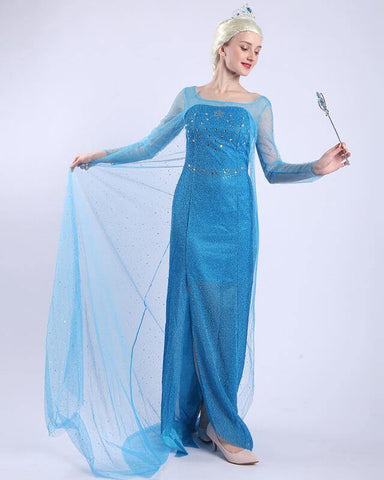 Adult Frozen Elsa Princess Gown Halloween Costume