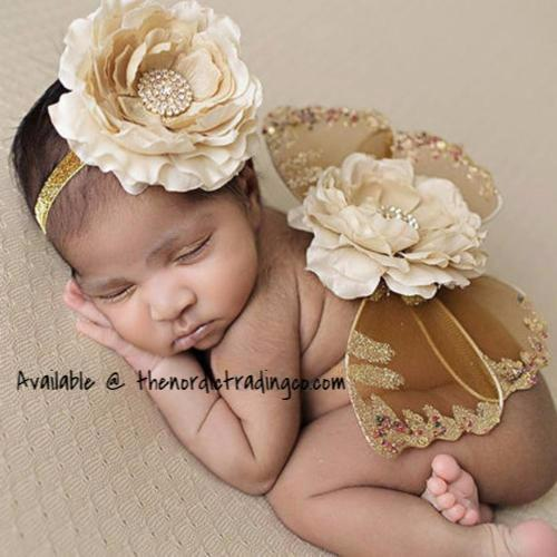 Infant Girl Butterfly Wings Photo Prop Newborn
