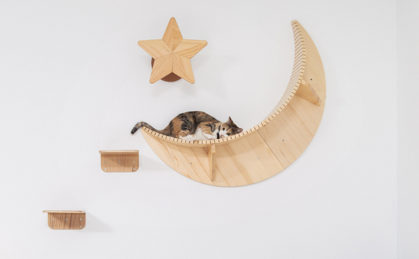 Crescent Moon Kitty Cat Shelf Natural Pine Wood Wall Mounted Home Accent Pet Furniture