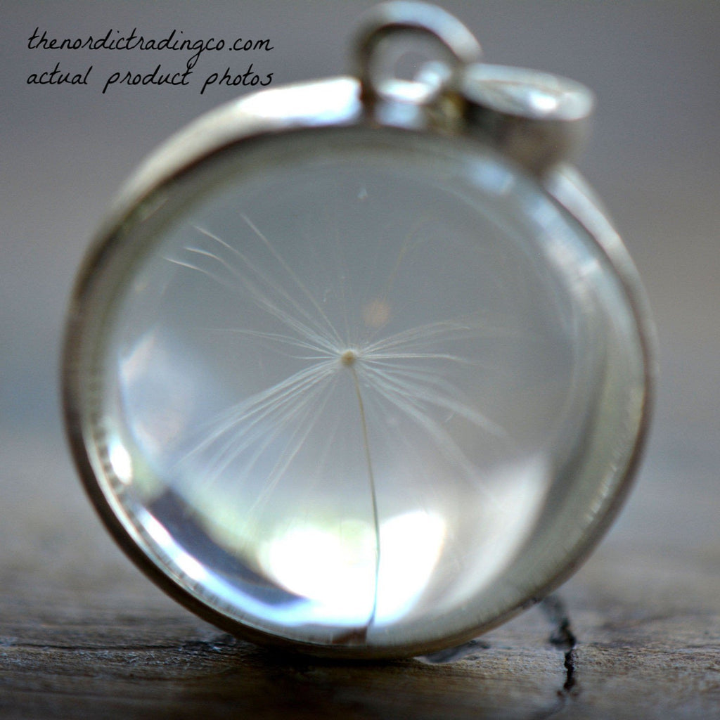 Women's Crystal Ball Single Dandelion Wish Inside Sterling Silver Pendant Necklaces Womens Girl's Gift Jewelry Accessories Gifts Her