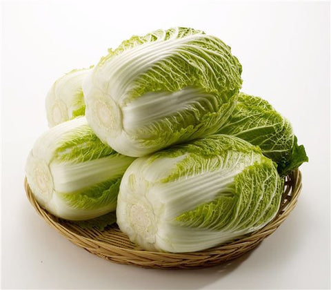 Korean Cabbage/배추 2LB (소)