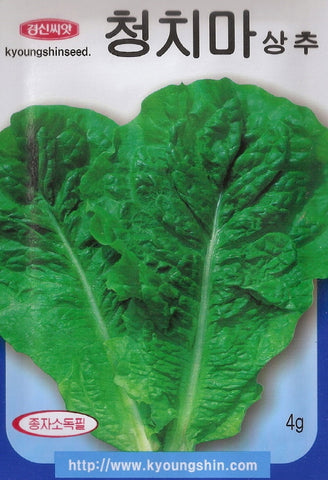 [KOREAN SEEDS]청치마 상추 /Green Lettuce