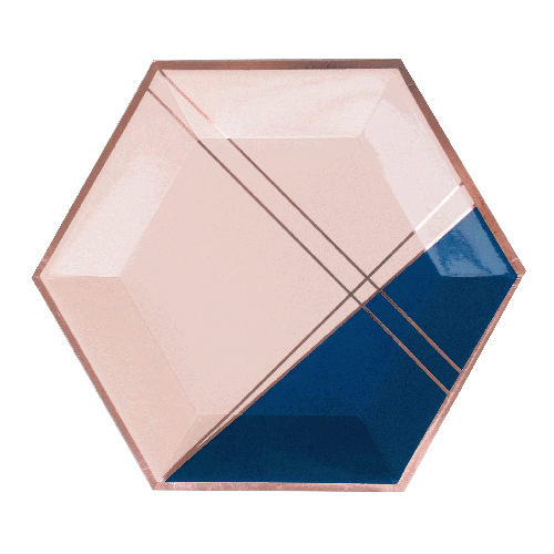 Navy Blush - ERIKA Hexagon Large Party Plates