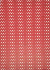 A4 - Patterned - Double Sided - Stripe/ Dots - Red / White