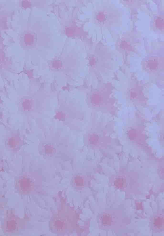 A4 - Translucent / Vellum - Patterned - Gerbera - Pink on Sheer