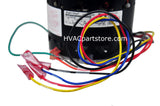 Wires on Coleman motor S1-02427651000 1/3hp 4-speed