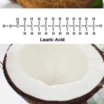 "C12 (LAURIC ACID), A MAJOR COMPONENT OF COCONUT OIL, IS NOT A MEDIUM CHAIN FATTY ACID; AND HAS NO PROVEN ""ANTI-MICROBIAL"" PROPERTIES IN VIVO"