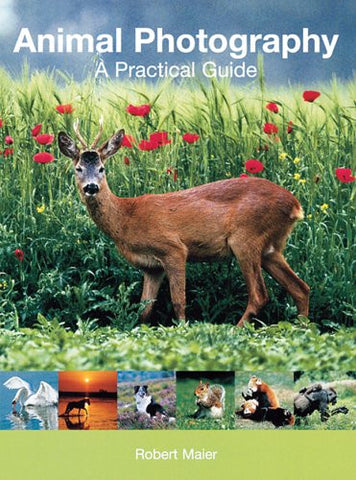 Animal Photography: A Practical Guide by Maier, Robert