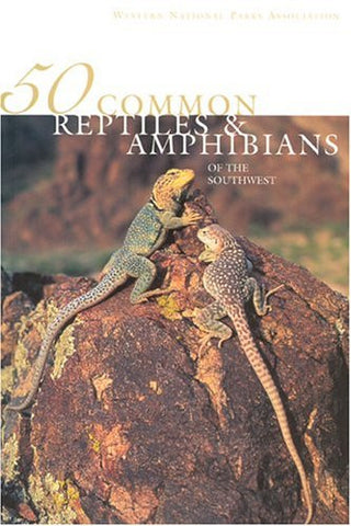 50 Common Reptiles & Amphibians of the Southwest by Hanson, Jonathan; Hanson,...