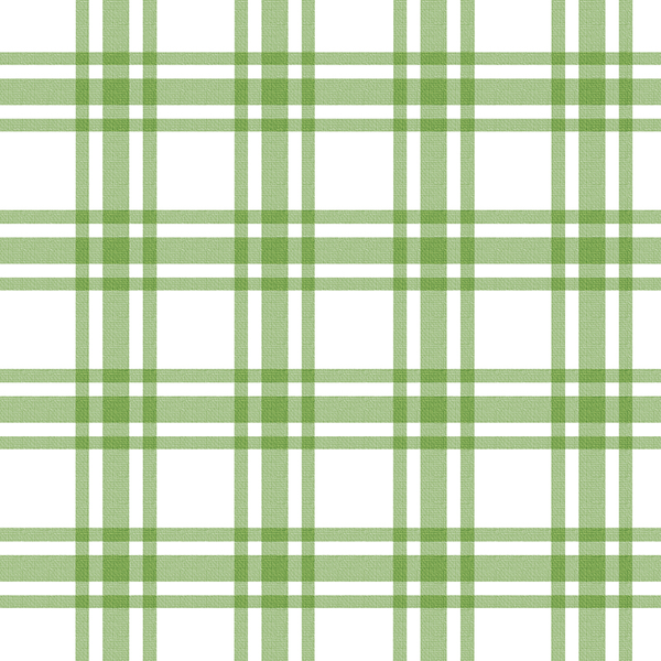 Light Green White Check