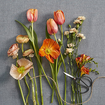 Faraday - Florist Choice Orange/Cream Flowers Handtied