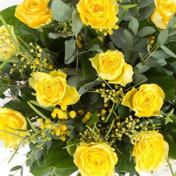 Austen - Twelve Yellow Long Stem Rose Bouquet