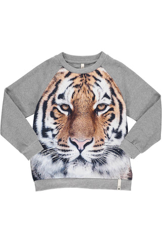 Popupshop Tiger Sweatshirt with Grey sleeves and back | POCO KIDS