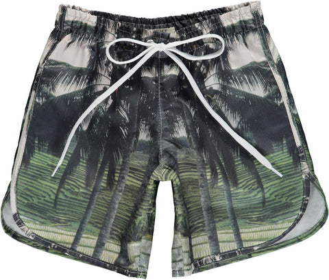 Long Swimshorts- Palm print