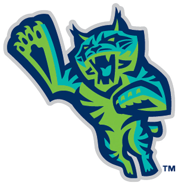 Lynchburg Hillcats - Premium Reserved Tickets