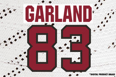 Conor Garland #83