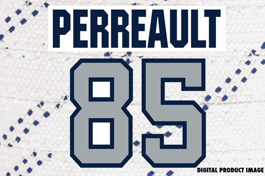 Mathieu Perreault #85