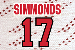 Wayne Simmonds #17
