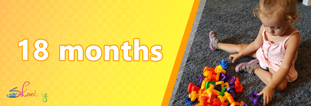 baby toys 18-24 months