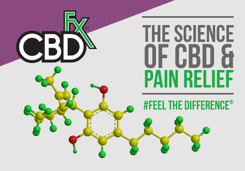 Does CBD help with pain relief?