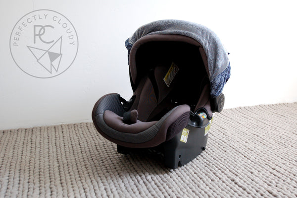 INDIGO | Bug-Me-Not Infant Car Seat Cover
