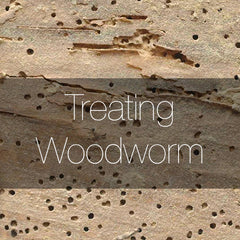 How to treat woodworm