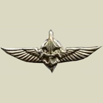Israel Military Products DUVDEVAN - Army Undercover Special Unit Insignia