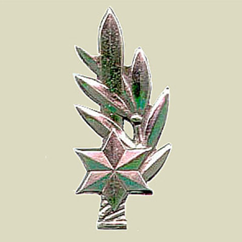 Israel Military Products KATZIN - IDF Combat Officer Insignia