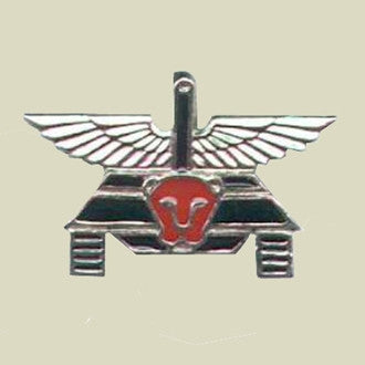 Israel Military Products PALSAR 500 - Tank Commando Insignia