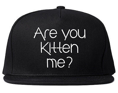 Very Nice Are You Kitten Me Cats Black Snapback Hat