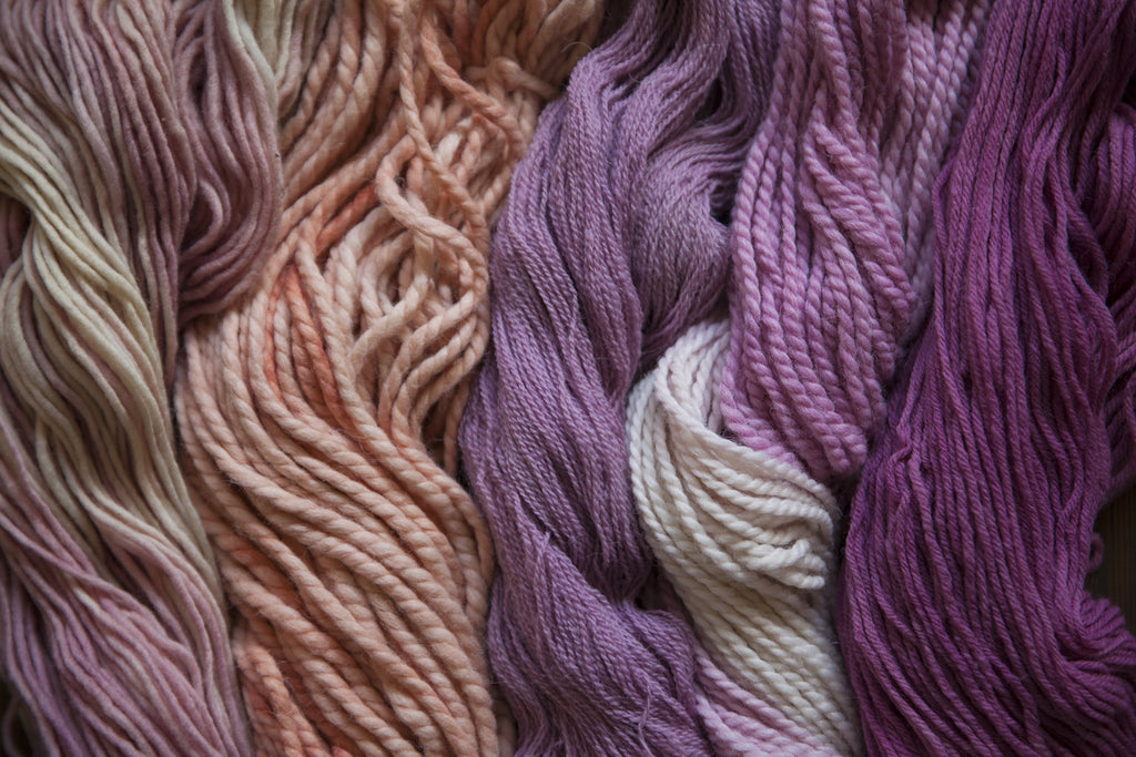 Summer Natural Dye Workshops Full Series